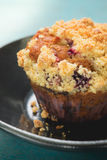 Testy blueberry muffins. Close up shot Royalty Free Stock Photo