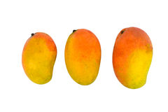 3 Testy Colorful Mango. On white Isolated background Stock Photos