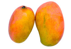 2 Testy Colorful Mango. On white isolated background Royalty Free Stock Photography
