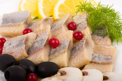 Testy cut herring with vegetable Stock Images