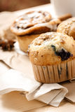 Testy Muffins and Cinnamon roll Royalty Free Stock Photography