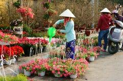 Tet en la ciudad de Ho Chi Minh, mercado de la flor Imágenes de archivo libres de regalías