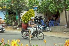 Tet flower market stock images