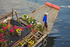 Tet flower market royalty free stock photos