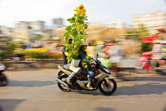 Tet flower market Stock Photo
