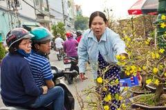 Tet flower market royalty free stock images