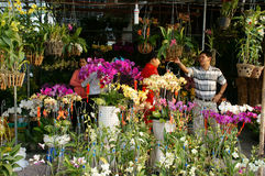 Tet on Ho Chi Minh city, flower market Stock Image