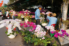 Tet op Ho Chi Minh-stad, bloemmarkt Royalty-vrije Stock Fotografie