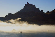 Tetacawi (ZiegeTit) im Nebel Stockbild