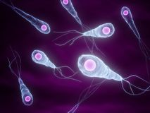 Tetanus bacteria vector illustration