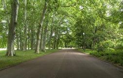Tete d de jardin ou ` de Parc de la Tete d ou à Lyon, France jardin appelé par la tête d'or pour le tresor Parc de la tête d'or à Images stock