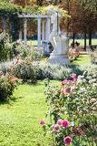 Tete d ` lub, piękny ogród Lion obraz royalty free