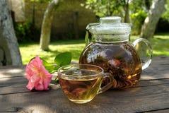 Tetera con té chino Imagen de archivo