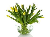 Tetera de cristal con los tulipanes amarillos Foto de archivo