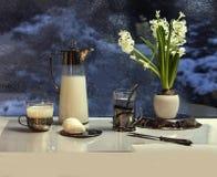Tetera de la leche Fotografía de archivo libre de regalías