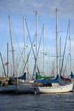 Tethered sailboats. Sailboats tethered to the dock stock images