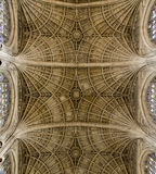 Teto da capela da faculdade do ` s do rei, Cambridge Foto de Stock