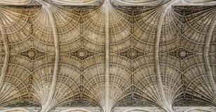 Teto da capela da faculdade do ` s do rei, Cambridge Imagens de Stock