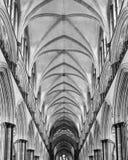 Teto da nave da catedral de Salisbúria fotografia de stock