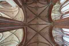 Teto de catedral Imagens de Stock