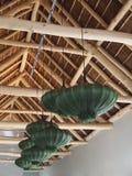 Teto de madeira do projeto moderno Candelabros verdes na forma de Imagens de Stock Royalty Free