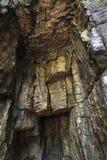 Entrada da caverna, teto Imagem de Stock