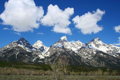 Teton山和云彩 免版税库存照片