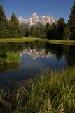 Teton范围被反射的光滑的水大提顿峰的国家公园 免版税库存照片