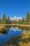 Teton风景反射 免版税库存照片