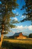 teton национального парка амбара грандиозное историческое Стоковое Фото