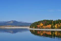 teton национального парка осени грандиозное Стоковая Фотография RF