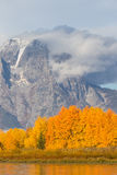 Teton Autumn Stock Photos