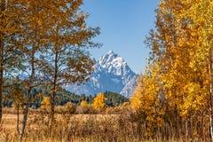 Teton Autumn Landscape Stock Image