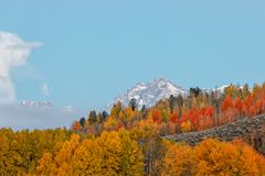 Teton Autumn Landscape. A scenic landscape of the tetons in Wyoming in autumn Stock Photos