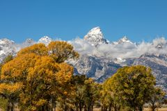 Teton Autumn Landscape. A scenic landscape of the tetons in Wyoming in autumn Royalty Free Stock Photography
