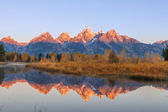 Teton Autumn Reflection at Sunrise Stock Images