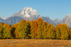 Teton Autumn Scenic Stock Photo