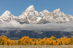 Teton Autumn Stock Photo