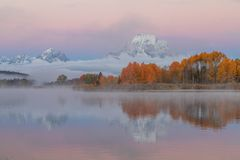 Teton Autumn Sunrise Reflection Landscape fotografia de stock royalty free