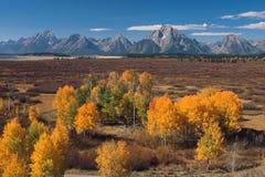 Teton dans l'automne Photo libre de droits