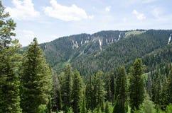 Teton-Durchlauf Stockbilder