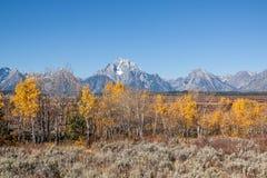 Teton Fall Landscape Royalty Free Stock Image