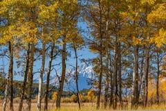 Teton Fall Landscape Stock Images