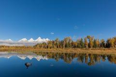 Teton Fall Reflection Royalty Free Stock Images