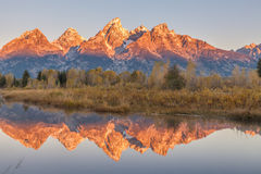 Teton Fall Reflection at Sunrise Royalty Free Stock Photo