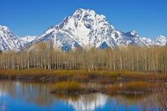 Teton grand Photo libre de droits