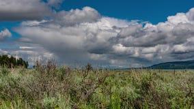 Teton magnífico - lluvia distante almacen de metraje de vídeo