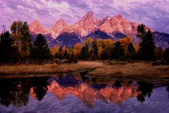 Teton Morning Reflection. Morning light on the Grand Teton Range reflected in a side channel of the Snake River in Grand Teton NP in northwest Wyoming Royalty Free Stock Images