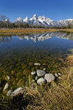 Teton Mountain Range. Reflecting in river water with surrounding rocks and plants Royalty Free Stock Images
