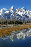 Teton Mountain Range. Reflecting in river water with surrounding rocks and plants Stock Images